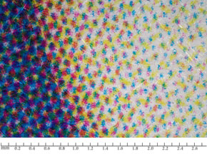 Dry Toner DP: dots with dusty appearance in a rosette pattern