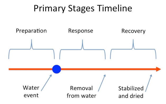 Flood: Primary Stages Timeline