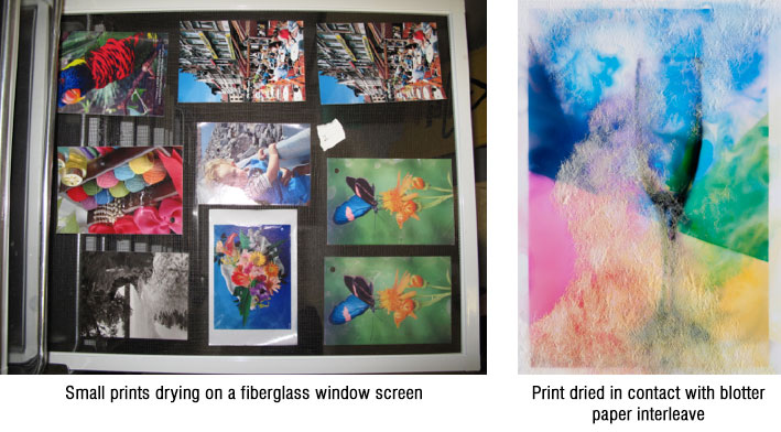 Prints need to be dried individually, horizontally, and face up. Blotter papers as a support while drying can aid in removal of water from the print, but drying on screens can allow evaporation from both sides of the objects.